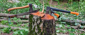 Several hatchets stuck in a tree stump on a camping trip.