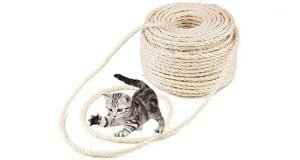 A kitten playing with a roll of sisal rope.